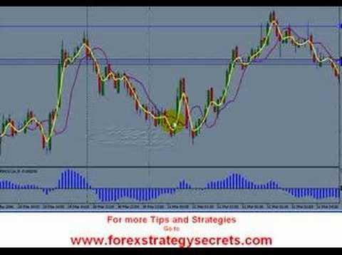 Forex trade advice