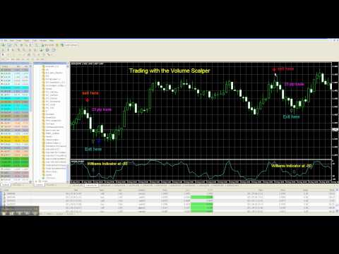 Accurate forex trading signals